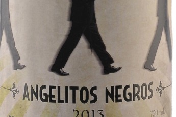Angelitos Negros 2015