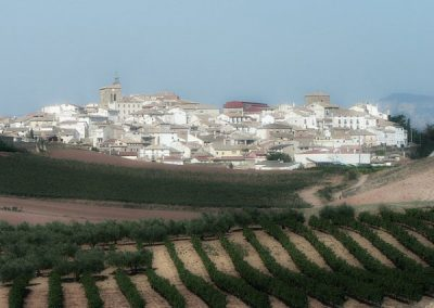 Día del Vino en Cirauqui, 11 de septiembre
