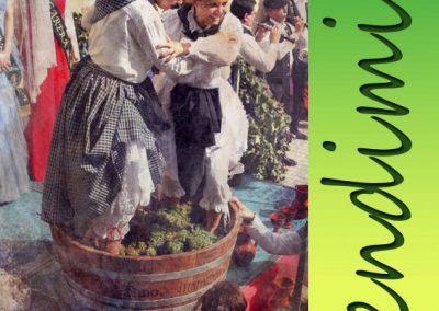 XXVII Fiesta de la Vendimia de Rueda