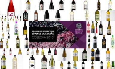 Salón de los Mejores Vinos Jóvenes de España: 29 de junio, cita con las medallas 2016