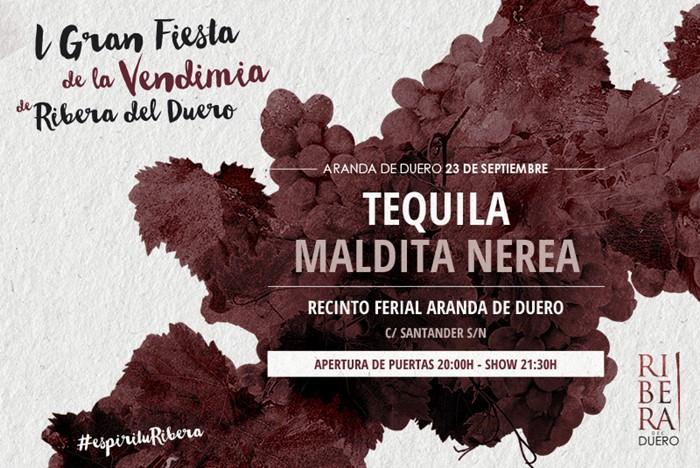 Aranda de Duero se prepara para la 1ª Gran Fiesta de la Vendimia de Ribera del Duero, 23 septiembre