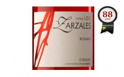 Vega los Zarzales 2017