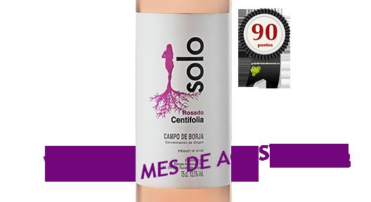 Solo Centifolia 2017