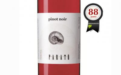 Parató Rosado Pinot Noir 2018 Ecológico
