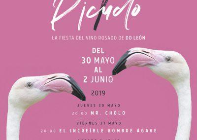 'ROSADO Y PICUDO'  VINO DO LEÓN, 30 MAYO AL 2 DE JUNIO